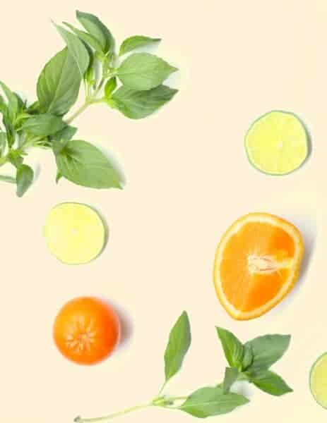 Basil, oranges and lime on a white background