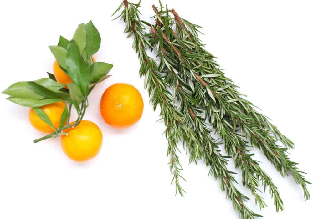 A glass spray bottle on a white background surrounded by oranges, rosemary cloves and cinnamon sticks