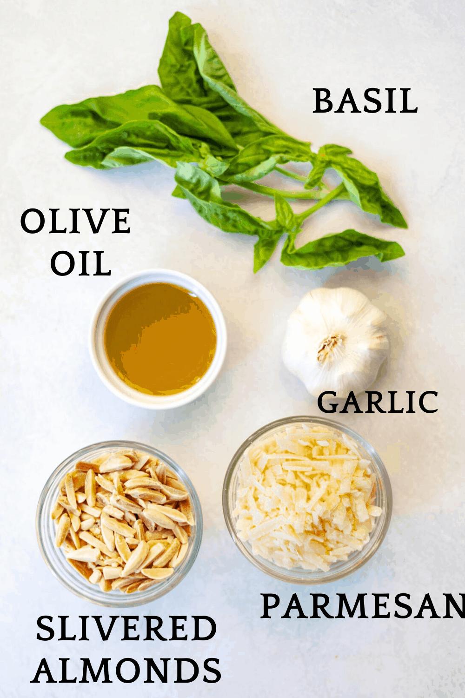 ingredients for making almond pesto, including slivered almonds, parmesan, garlic, olive oil and basil leaves