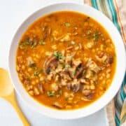 a bowl of mushroom and pearl barley soup