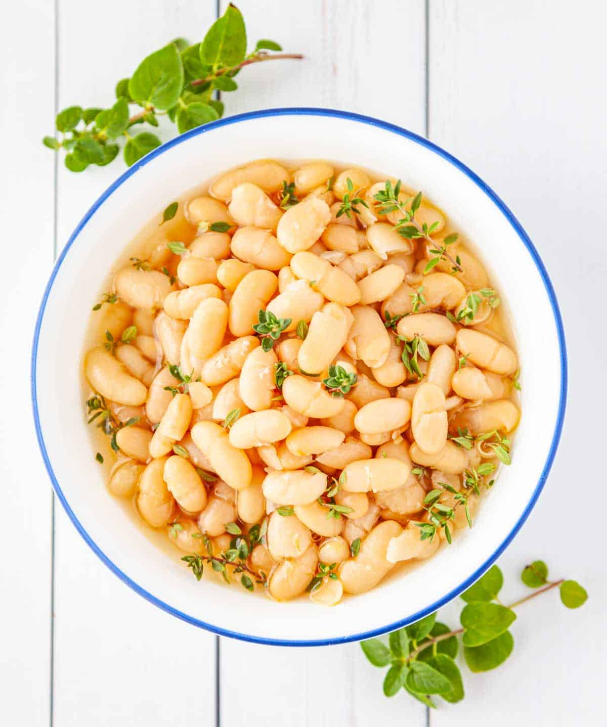 bowl of cooked Great Northern beans