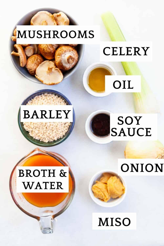 ingredients for mushroom barley soup
